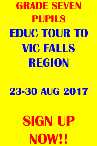 HomepageSideBanner-Educ-Tour-to-Vic-Falls-2017Aug